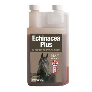 NAF Echinacea plus immunerősítő