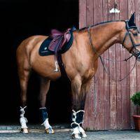 Ló-felszerelés