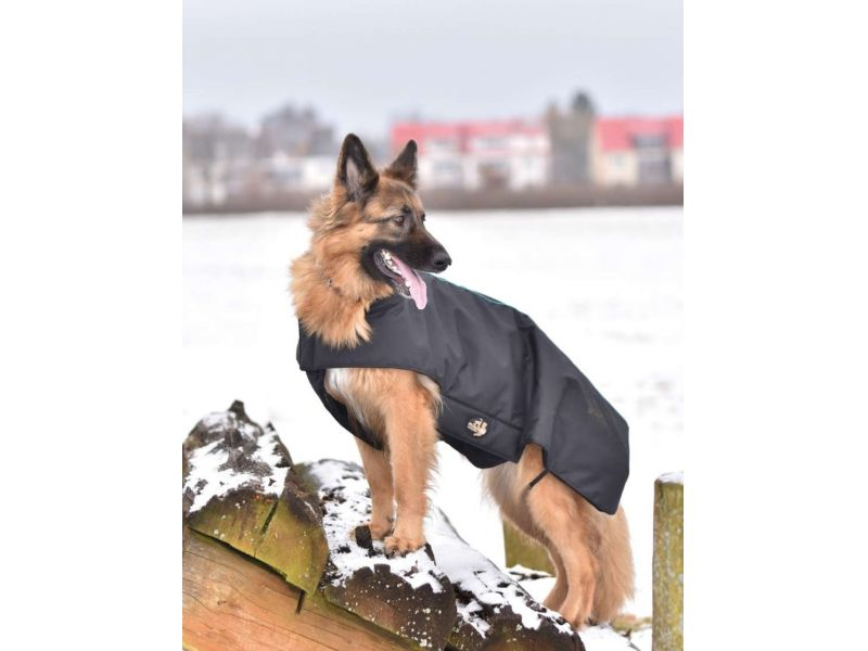 Torpol vízálló kutyakabát, NAGY